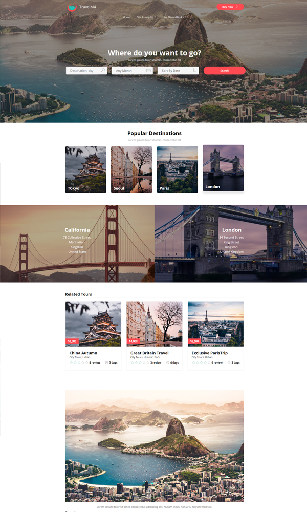 Travel Website Search Templates